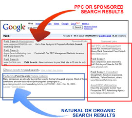 organic versus paid search results